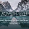 TÖBB NÖVEKEDÉS = ÖSSZEOMLÁS | ClimeNews