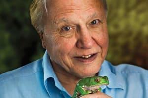 David Attenborough | Gondolatok az emberről és a természetről - ClimeNews