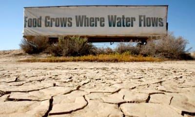A Global Footprint Network saját bevallása szerint túlbecsüli a biokapacitást, vagyis a Föld eltartóképességét