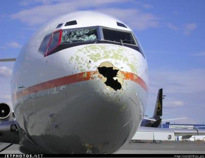 Az éghajlatváltozás a repülésben már nem vicces!   ClimeNews - Hírportál