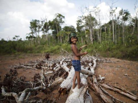 Brazil katonáknak kell megvédeniük az őslakosokat a fakitermelőktől | ClimeNews