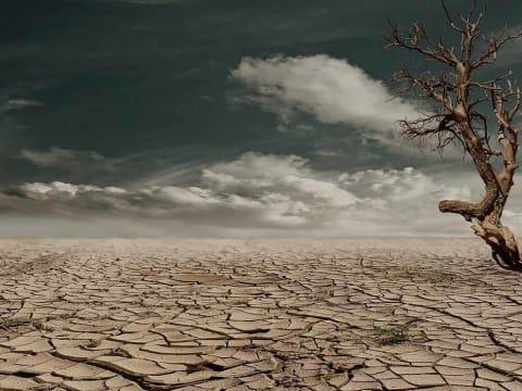 A bűntudat nem elég a Föld megmentéséhez   ClimeNews - Hírportál