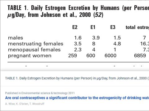 A terhesség tízszer nagyobb hormonterhelés, mint a fogamzásgátló | ClimeNews