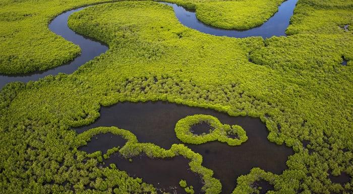 Kiegyenlítés (carbon offset)   Elkötelezettek vagyunk a fenntarthatóság érdekében