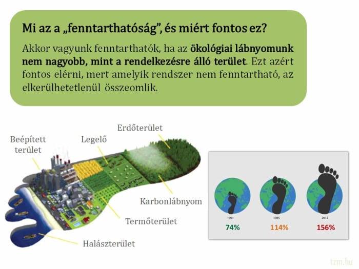 Miért lehet az, hogy magasabb az ökolábnyom, mint a biokapacitás? - ClimeNews