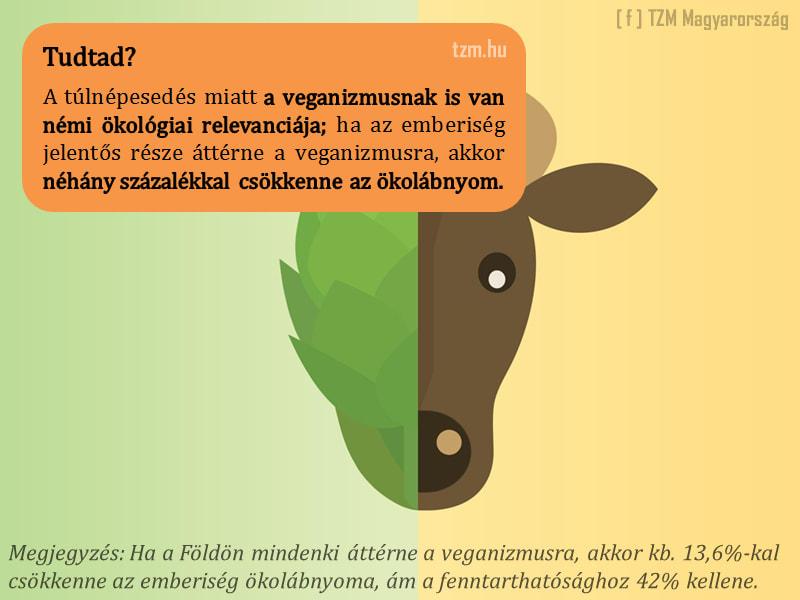 Veganizmus -megújulók és a valóság! - ClimeNews - Hírportál