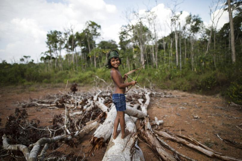 Brazil katonáknak kell megvédeniük az őslakosokat a fakitermelőktől   ClimeNews