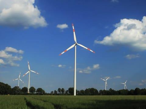 A Konica Minolta is hozzájárul a karbonsemlegességhez | ClimeNews