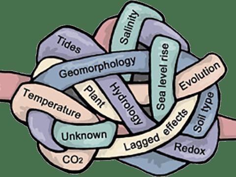 A fenntarthatóság gordiuszi csomója | ClimeNews - Hírportál