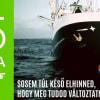 Negyvenöt éves a Greenpeace   ClimeNews - Hírportál