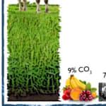 Ír-CO2 | A szén-dioxid adó sikere | ClimeNews - Hírportál