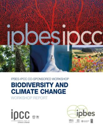 Az IPCC és az IPBES ismét figyelmen kívül hagyja a túlnépesedést