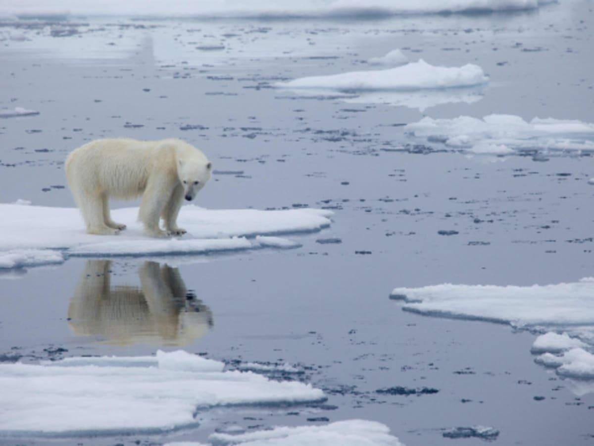 Az USA és Kína elkötelezett a klímaválsággal kapcsolatban