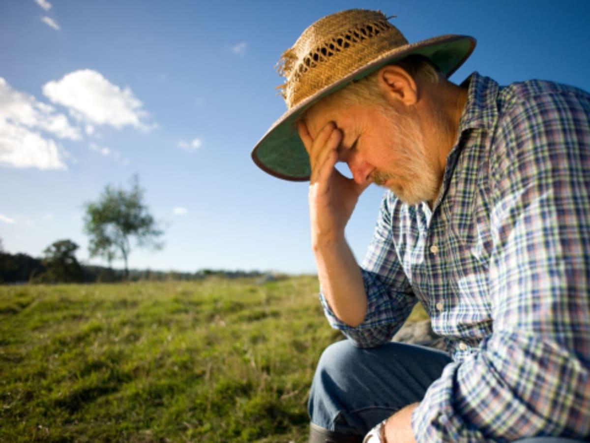 A farmer lábnyoma - Regeneráció: A kezdés | ClimeNews