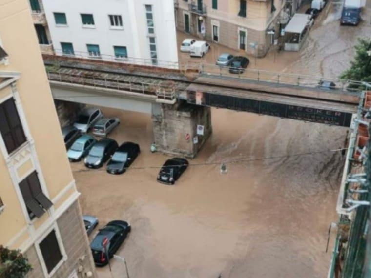 """Savona, Letimbro árad: """"Ilyet még nem láttak!"""""""