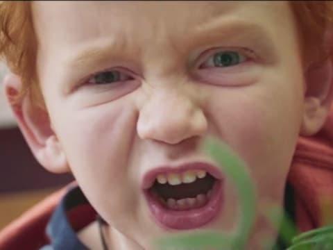A klímaváltozásra hívja fel a figyelmet a Wild Edens új dokumentumfilm-sorozat - ClimeNews