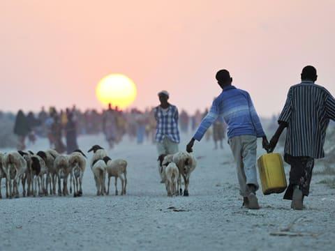 Víz Világnapja 2020 – Fókuszban a klímaváltozás | ClimeNews