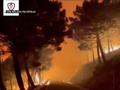 Sokfelé pusztítanak erdőtüzek | ClimeNews