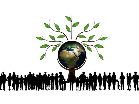 A túlnépesedési projekt | The Overpopulation Project