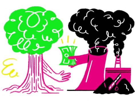 A fák életben tartása az egyik reményünk | ClimeNews