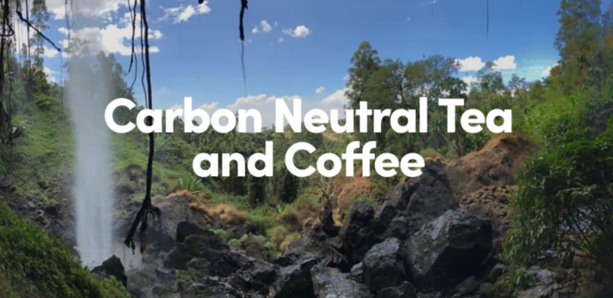 Karbonsemleges tea és kávé   ClimeNews - Hírportál