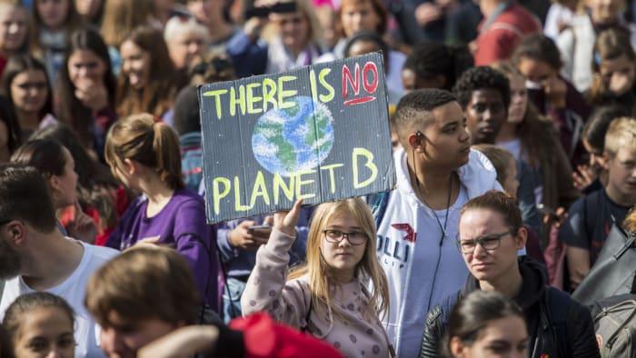 Nem elég radikális a német terv   ClimeNews - Hírportál
