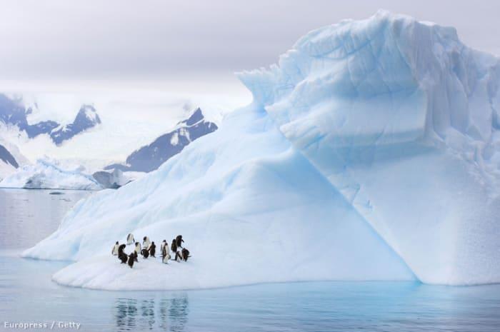 Fotó: Barcroft Media   Orosz rulett a természet ellen   ClimeNews - Hírportál