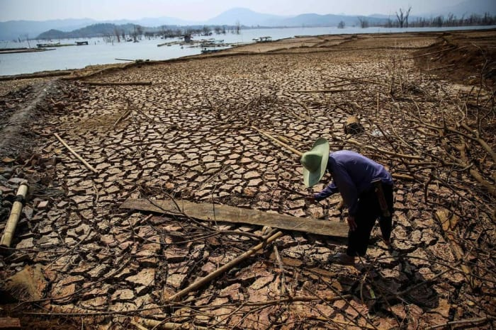 A man collects firewood on a dried up-dam in Indonesia's West Java province on Sept. 15, 2018. Photographer: Andrew Lotulung/Getty Images   ClimeNews - Hírportál