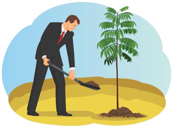 A faültetés átverés 6 módszere | ClimeNews -Hírportál