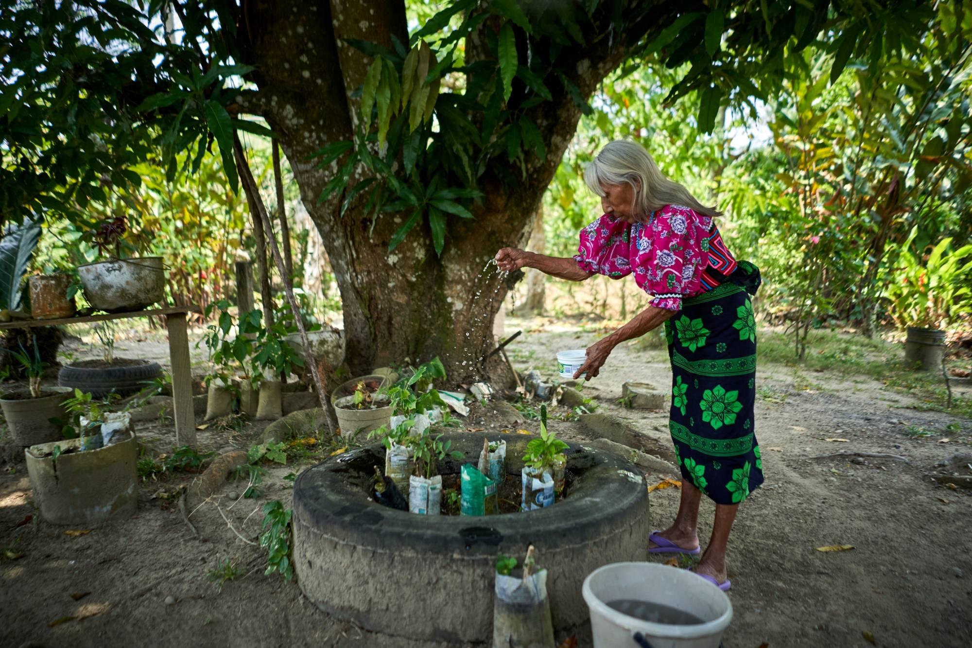 Abuela regando semillas