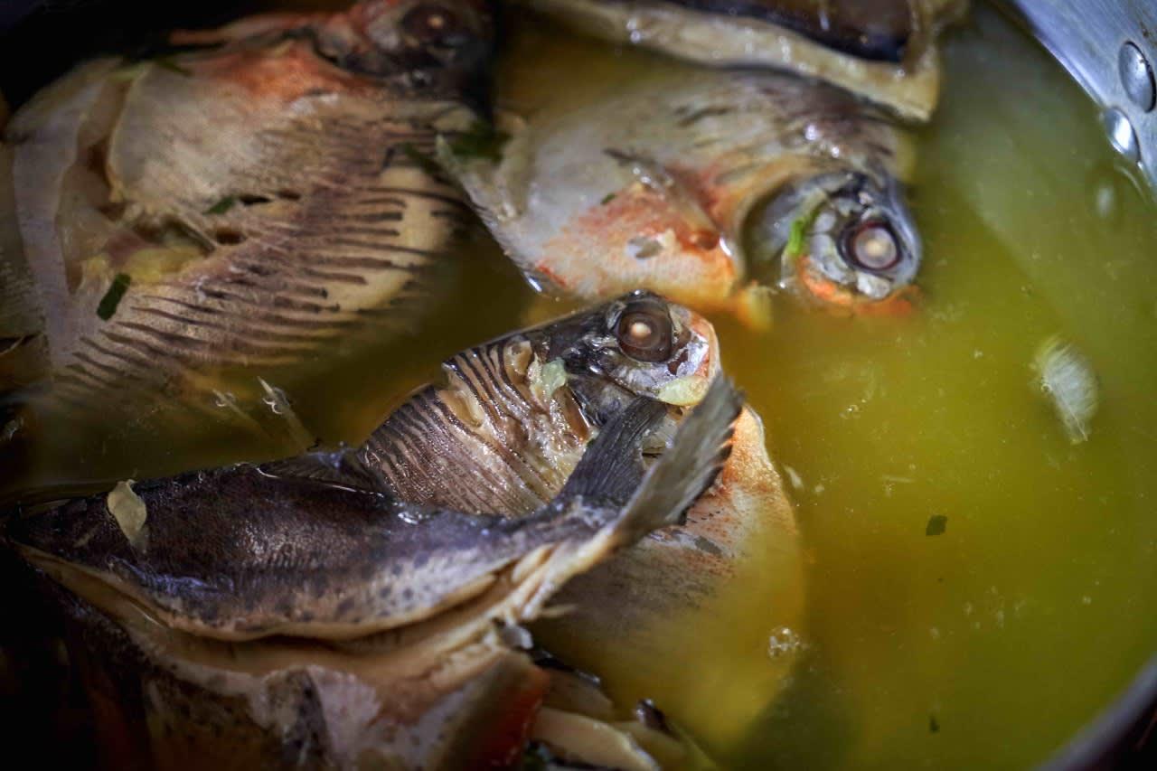 Pescado cocinado por Lourdes