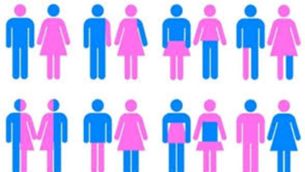 ¿Sabías que existe una Red Latinoamericana y del Caribe de Personas Travestis, Transexuales y Transgénero?