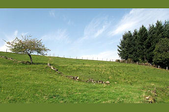 Plateau de Viadène, qui commence à ressembler à celui de l'Aubrac