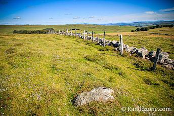 Plateau de l'Aubrac sur le GR 65