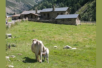 Vall d'Incles (Andorre)