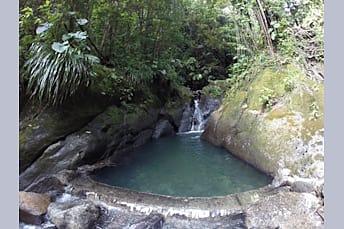 Bassin bleu sur Basse-Terre en Guadeloupe