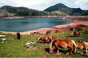 Lac d'Estaëns (@Imag'In Pyrénées)
