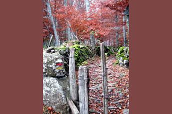 Randonnée La Voie Romaine AUBRAC Aveyron 12