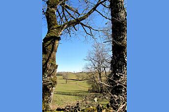 Randonnée balade près de Rodez, au parc de Vabre