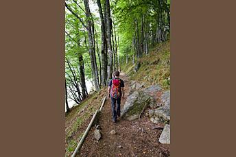 Fin de la randonnée autour du lac Pavin