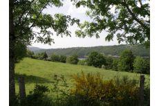 Abeilles, miel et volcans: visite d'une miellerie en Auvergne