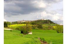 Randonnée autour de Castelnau de Montmiral sur le chemin de Gradille