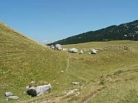 Col de l'Alpette