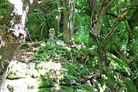 La Vallée des Traouïéro