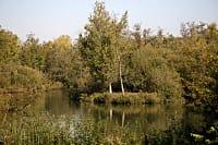 Réserve naturelle des Marais d'Isle