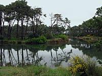 Les Réservoirs de Piraillan