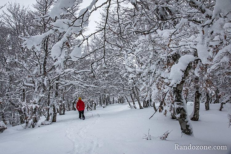 Trouver un sac à dos pour la randonnée en raquettes à neige