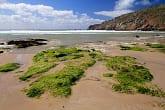 Baie des Trépassés au Cap Sizun