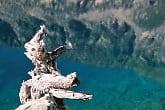 Lac Noir - Hautes-Pyrénées