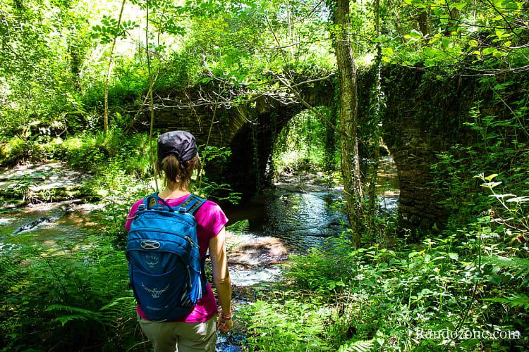 Pont de pierres dans la forêt